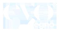 Evolegno Logo